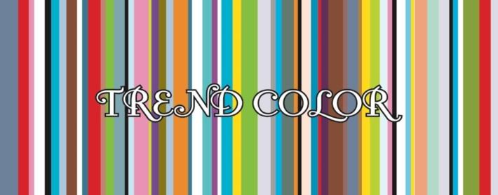 trendcolor_キューブ_Top